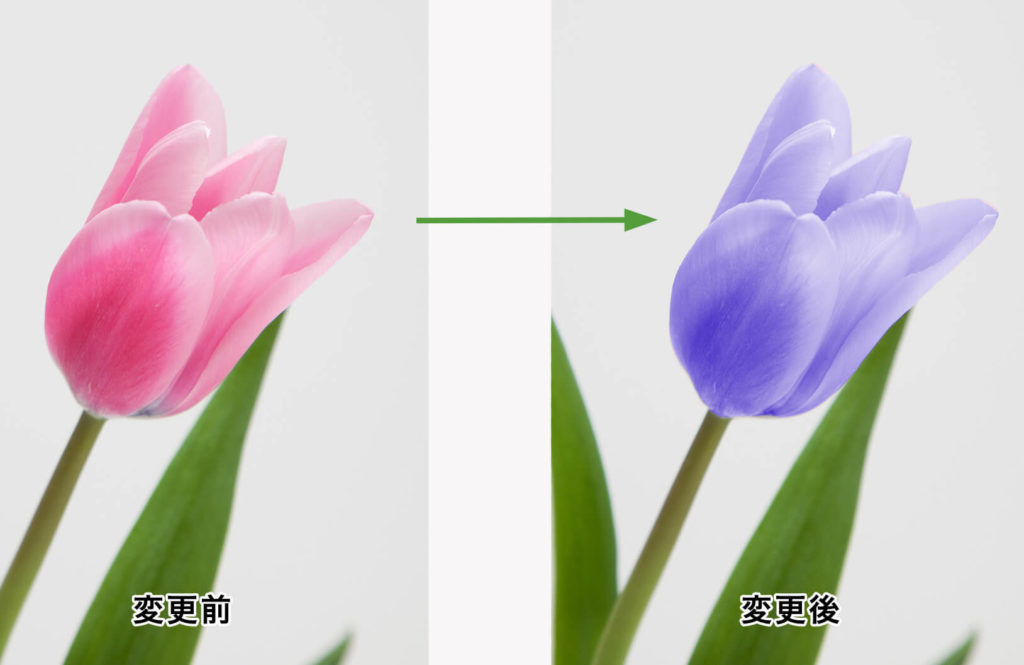 色相・彩度パネルを使って色を変更した結果