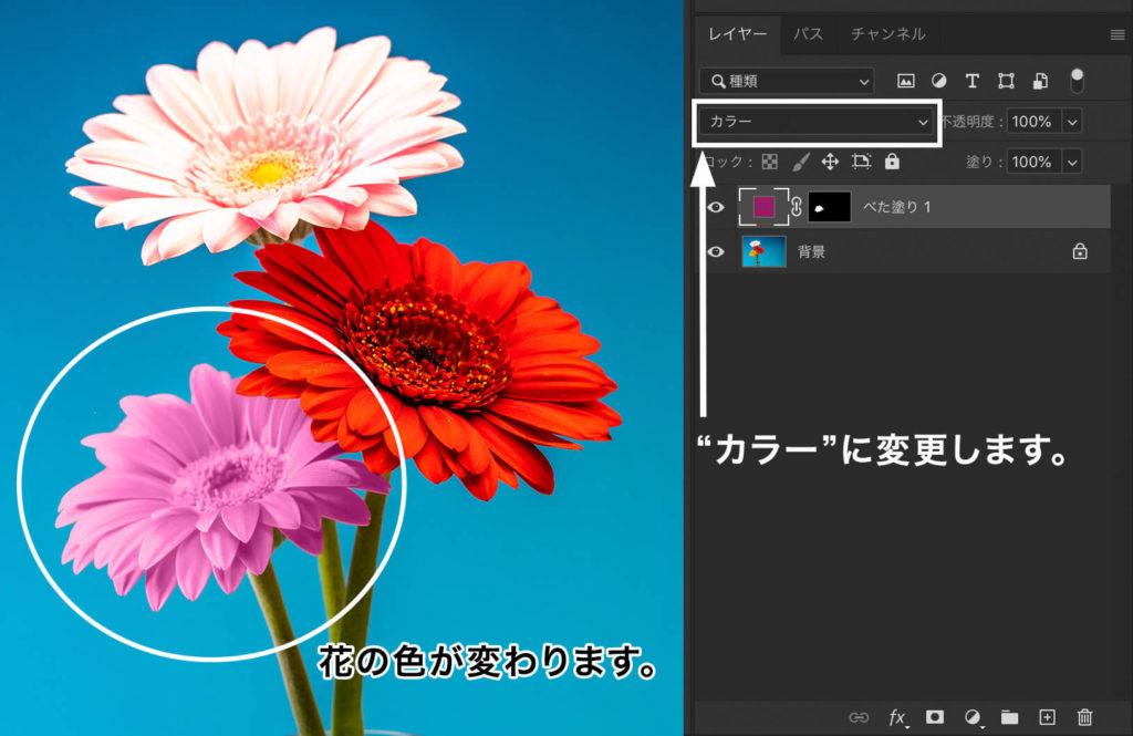 """描画モードを""""カラー""""に変更すると花の色が変わる"""