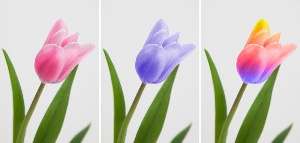 色の変更のイメージ